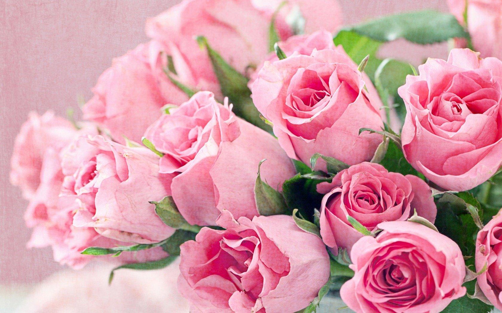 """Картинки по запросу """"фото розы"""""""